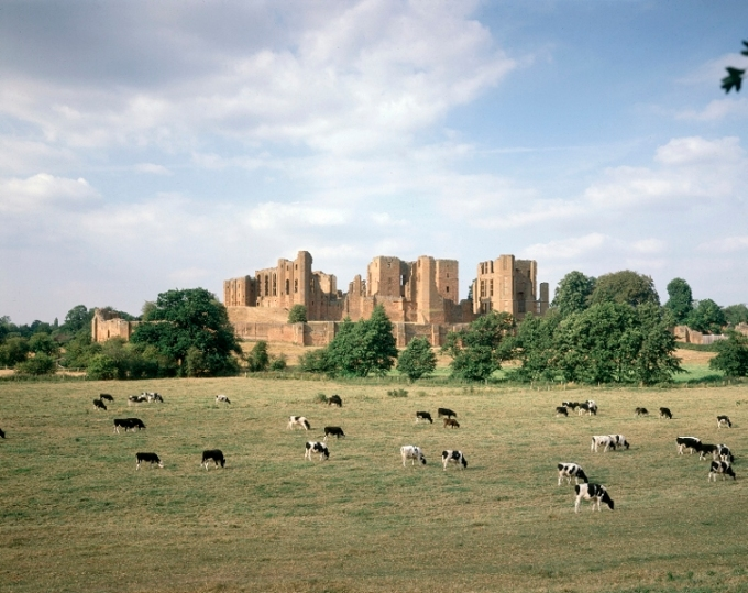 Kenilworth with Cattle
